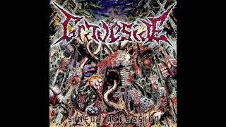 Скачать Graveside Sinful Accession Full Album