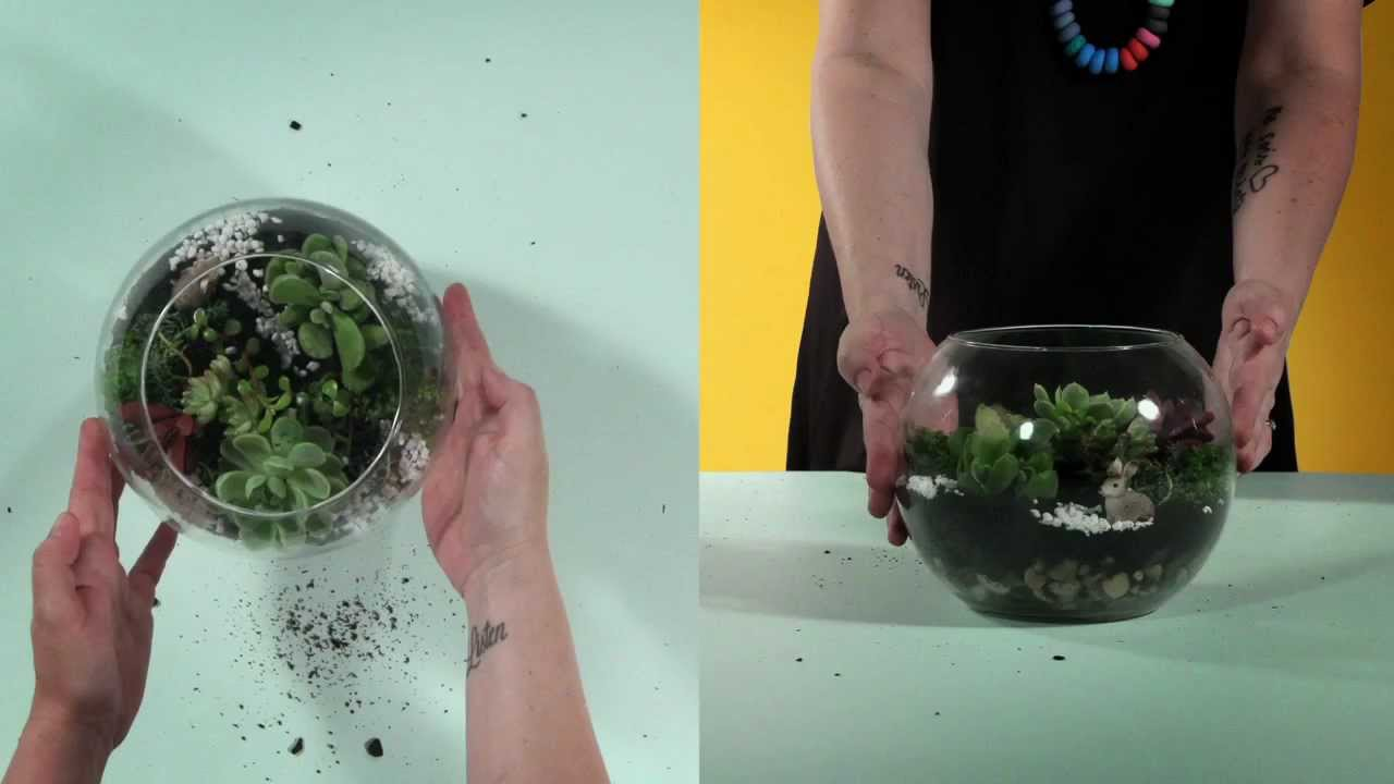 To Diy For How To Make A Terrarium Youtube