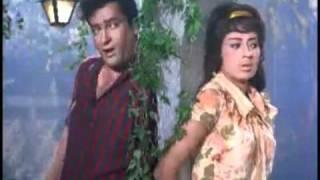 Janam Janam - Shammi Kapoor & Babita - Tumse Achcha Kaun Hai.flv