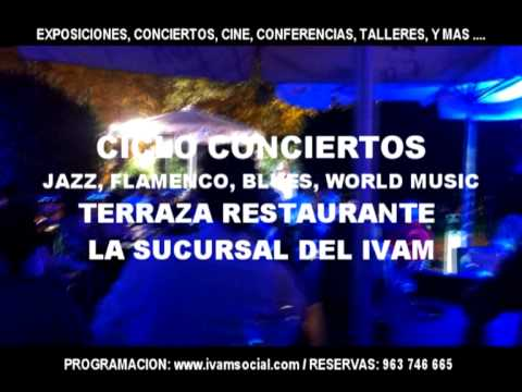 IVAM CONCIERTOS VERANO 2013. Jazz, Blues, Flamenco, World Music. MUSEO ARTE MODERNO VALENCIA