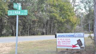 Tattnall County Tax Assessor-Cheap land for Sale-Middle Georgia