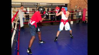 Young Boxer-VIDEO/PHOTO-SLIDESHOW