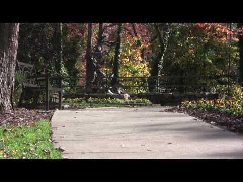 A Walk Through Bicentennial Park, Greensboro NC - Original Music by Nick Stubblefield