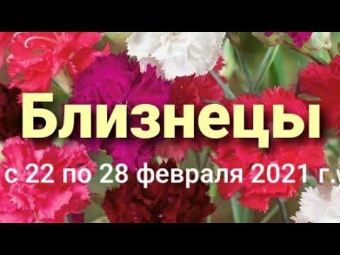 Близнецы Таро-гороскоп с 22 по 28 февраля 2021 г.