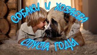 Собаки и хозяева спустя годы - ОКЕАН ФАКТОВ