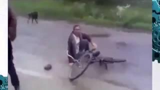 ДТП СОБАКА СБИЛА ДЕВУШКУ!
