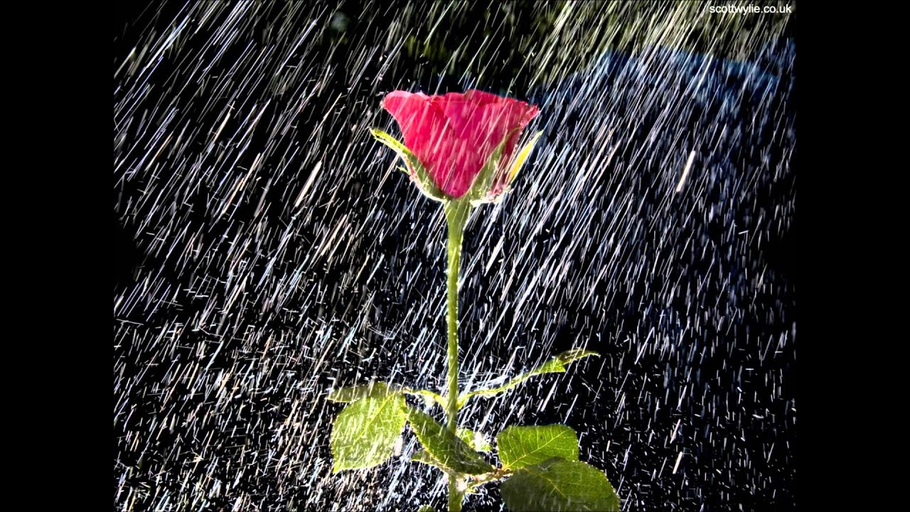Resultado de imagen de imagenes de gotas de lluvia