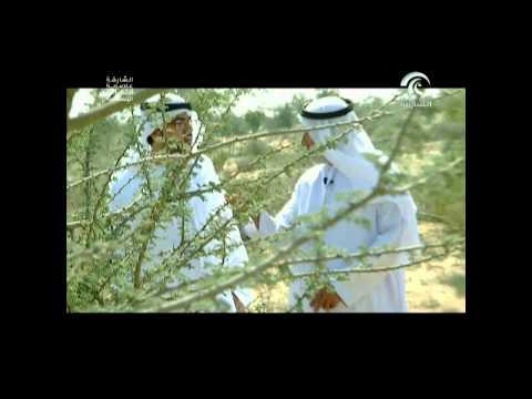 """برنامج قرى """" محمية المنتثر """" 20 مارس 2014"""