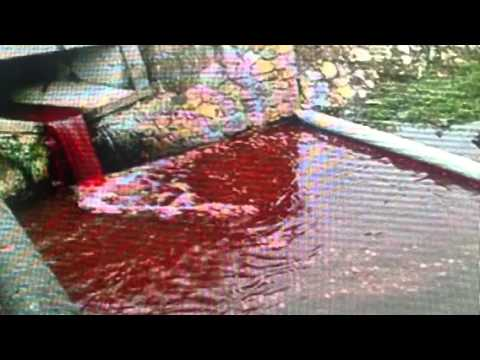 """Apocalyptic """"The River Turns Blood Red"""" In Slovakia"""