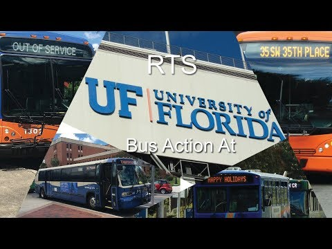 Gainesville RTS Bus Action at the University of Florida