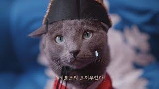 [조공]모든 반려동물은 왕이다, 오키로스틱