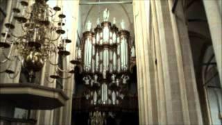 """Gerwin van der Plaats: """"Toccata"""" van Jules Grison"""