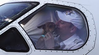 This Pilot Had A Canine Companion In The Cockpit, But He Was Actually On A Vital Rescue Mission