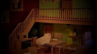 햄스터 공포체험 (Hamster Fear Experience)