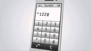 Детализация звонков и счета Билайн по электронной почте