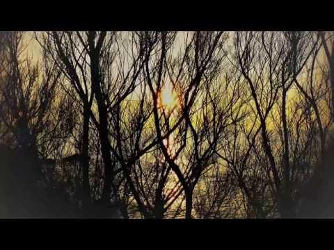 Gluck: Orfeo ed Euridice [Monteux] Risë Stevens, Lisa della Casa, Roberta Peters