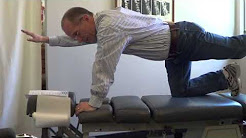 Five Fantastic Exercises For Low Back Pain - Delta Chiropractic of Lansing Michigan