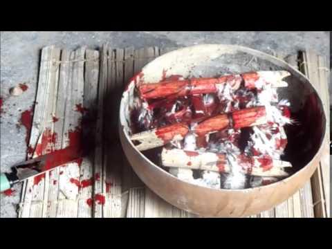 Voodoo Benin 2015 - real black magic rituals