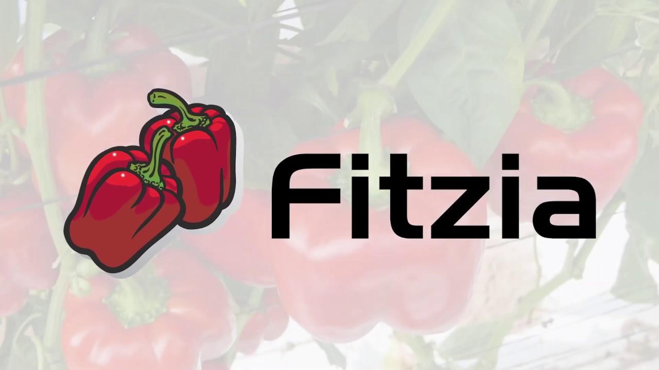 Syngenta presenta oficialmente FITZIA, su nuevo pimiento rojo único en su segmento.