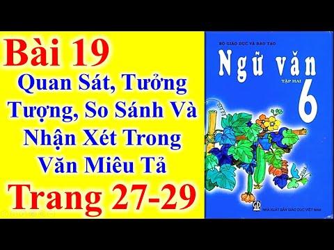 Ngữ Văn Lớp 6 Bài 19 – Quan Sát Tưởng Tượng So Sánh Và Nhận Xét Trong Văn Miêu Tả – Trang 27 - 29