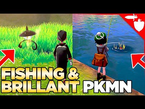 Brilliant Pokemon & Fish Chaining In Pokemon Sword And Shield