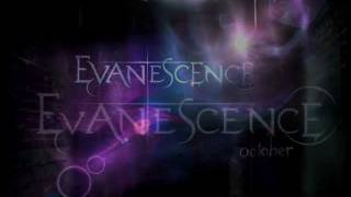 Evanescence Album 2011 - Track 2 - Made of Stone.(FallenAngel Video) wmv 172