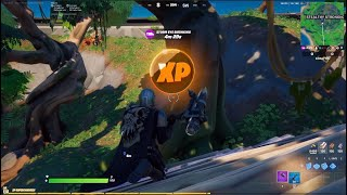 All Gold XP coin location in fortnite chapter 2 Season 5 (Week 8)