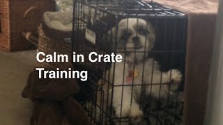 Crate Training For Dogs And Puppies For Calm Crate Behavior