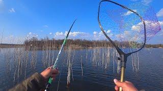 Март Весна Рыбалка Ловля карпа на боковой кивок в карьере My fishing