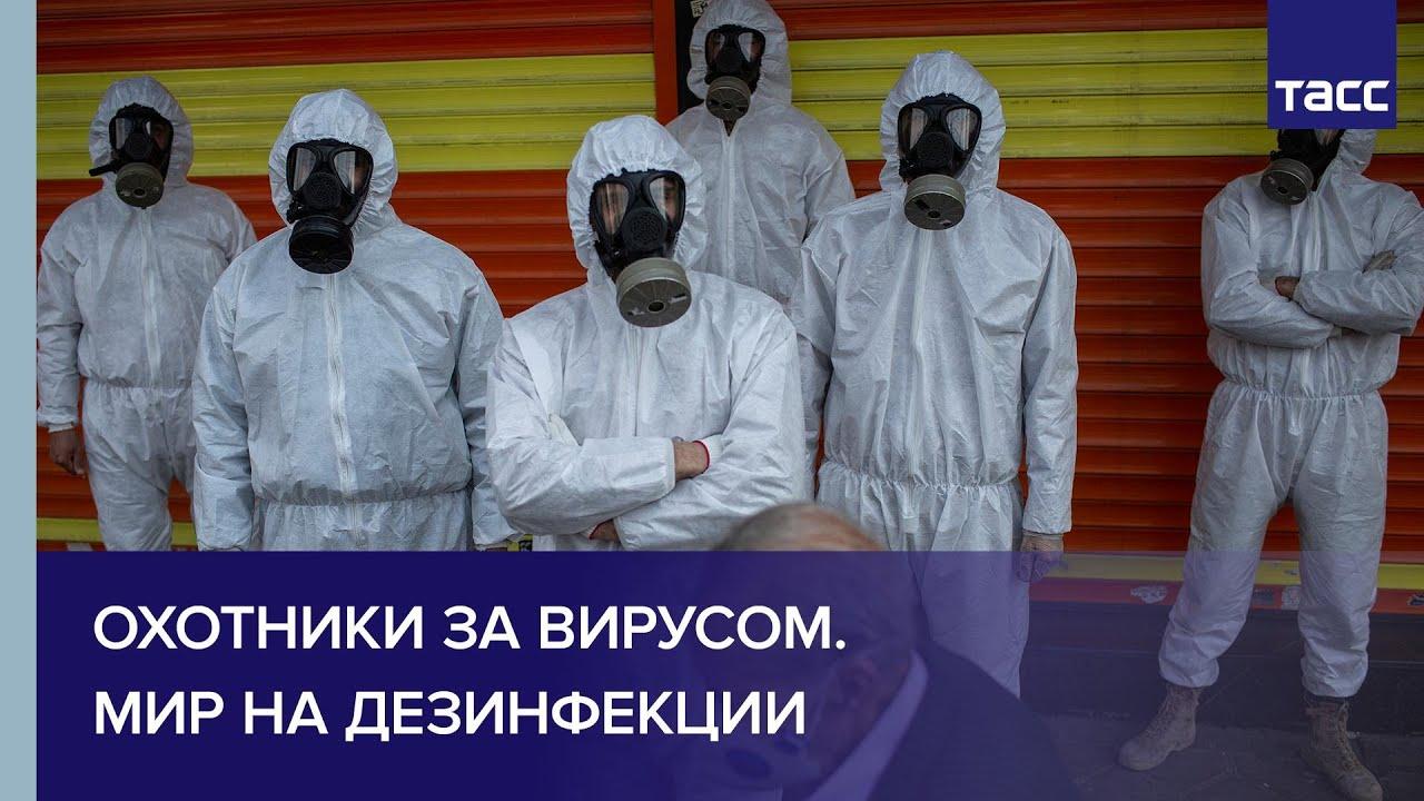 Охотники за вирусом. Мир на дезинфекции