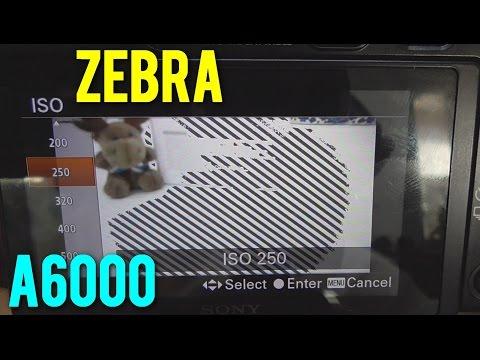 A6000: ZEBRA stripes (Show Exposure Level, 70 - 100+)