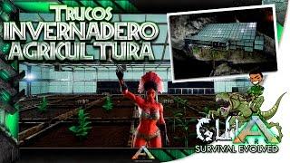 ARK Survival Evolved | INVERNADERO AGRICULTURA Y MÁS