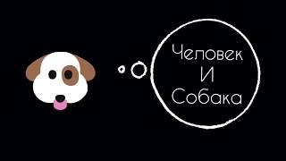 Человек и собака/ Поисковые игры для собак №13