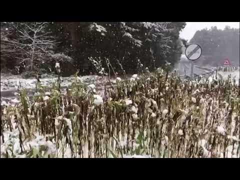 Nieva con fuerza en O Valadouro