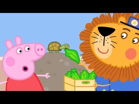 Peppa Pig Français 🦁 Le Zoo 🐧 Dessin Animé