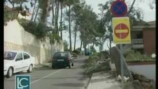 La Ciutat 29/01/09 - Vendaval al Baix Llobregat