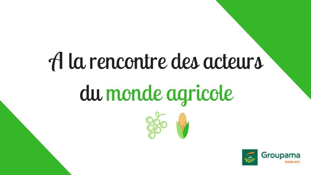 Agriculture & Alimentation - Actualités, vidéos et infos en direct