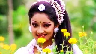 Malligaiye Malligaiye # மல்லிகையே மல்லிகையே # Tamil Songs # Periya Veetu Pannakkaran# Karthik,Kanaka