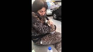 Mersin'de Kliniğe Getirilen Hasta Kediye,Veterinerden Tekme - MersinHaber.com