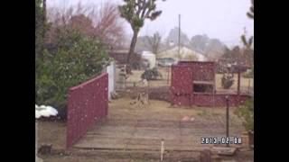 Snowing in Yucca Valley 2-8-2013