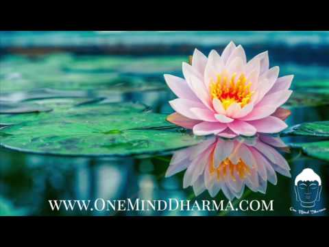 Guided Breath Meditation - Tuning into the Breath in the Body