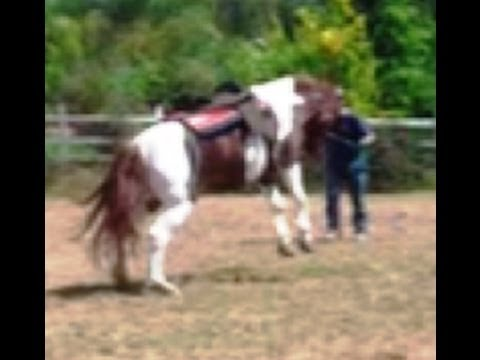Horse Bucking, Cold Back Horses, How to cure this problem with Mike Hughes