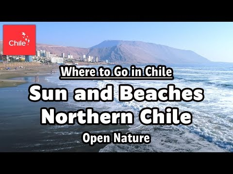 Where to Go in Chile:  Sun and Beaches Northern Chile - Open Nature