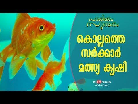The Profitable Government Fish Farming At Kollam   Haritham Sundaram EP 194   Kaumudy TV