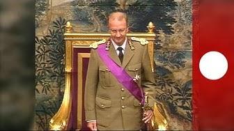 Albert II de Belgique : portrait d'un roi populaire