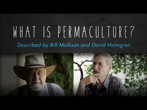 What is Permaculture? Bill Mollison, David Holmgren