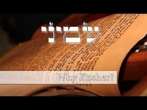 Parashat Shemini - What's the deal with Kosher animals?? - Rabbi Alon Anava