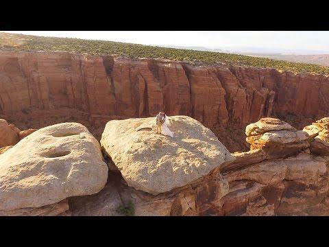 Woolston Wedding Aerial Video