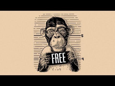 (FREE) Freestyle Rap Instrumental Beat – 'Hustler'