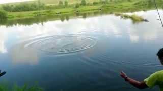 Рыбалка в Савельево. Сом за десятку!